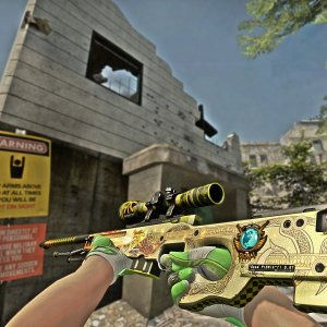 Sport Gloves Hedge Maze FN + Dragon Lore MW 0.07