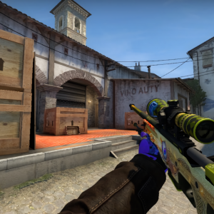 AWP Dragon Lore Titan Holo on scope and a Dignitas Holo.