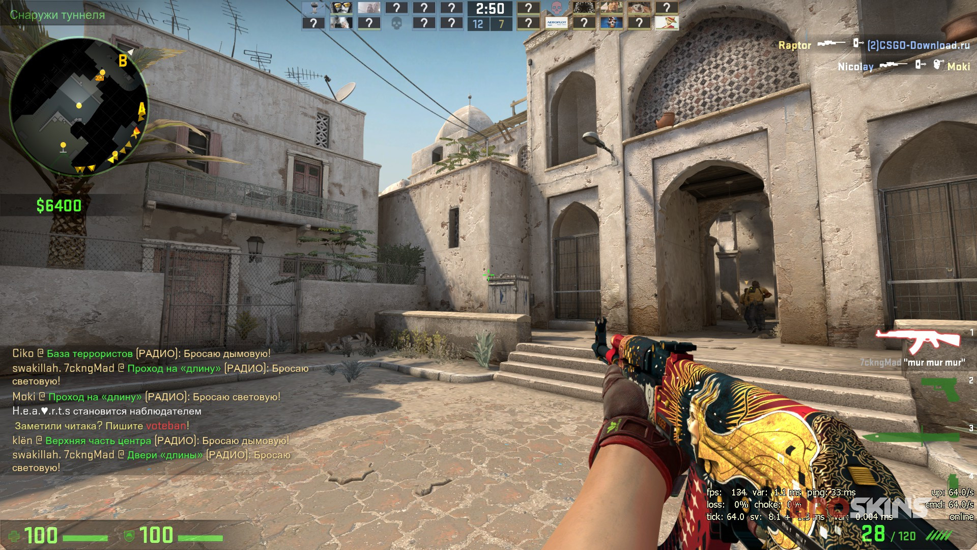 Ak 47 The Empress And Sport Gloves Bronze Morph Broskins Csgo